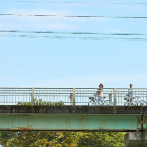 サイクリングなら好きなときに立ち止まれるから◎。橋は高台にあるので、眺めもばっちり。