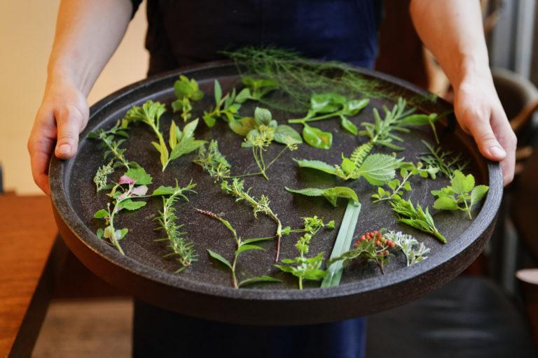 店に隣接した庭園ではハーブを栽培。料理に欠かせない存在。