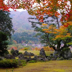 秋の足利庭園。