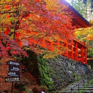 秋の比叡山延暦寺。