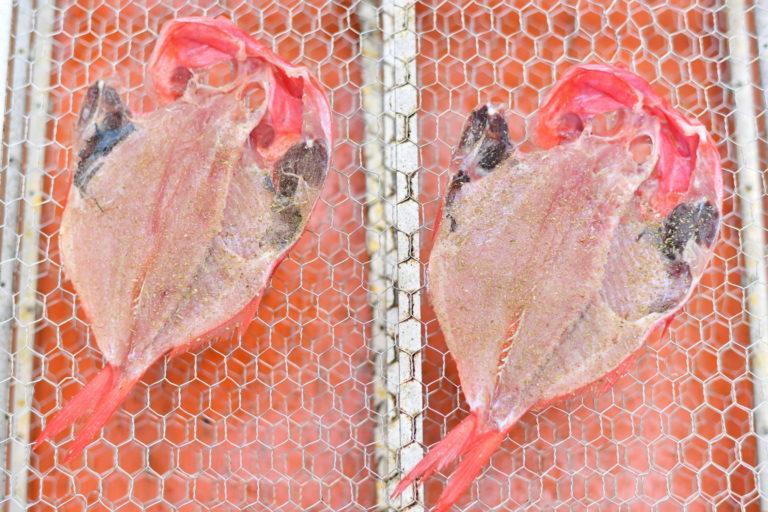魚をおいしく保存して、大切に食べよう