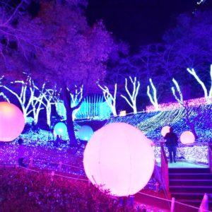 「光の海」の中には、大きなボールがピンクやブルーに光る。