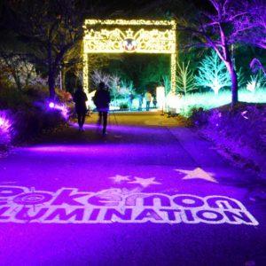 「ピカチュウのピカピカ点灯ショー」も開催。