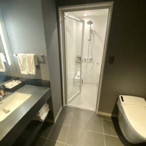 シャワーはハンスグローエ社製。
