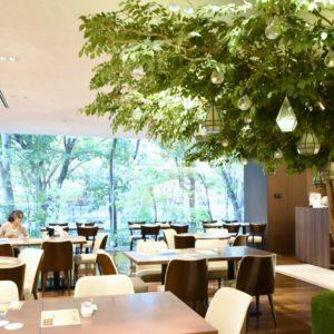 「樹林」をイメージした店内は、ナチュラルで堅苦しくない雰囲気。