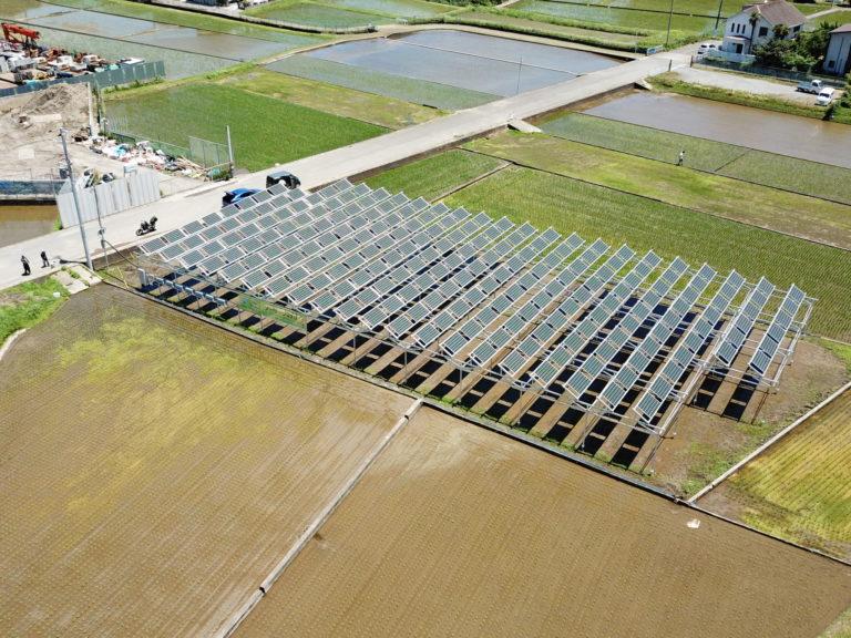 休耕地にソーラーパネルを設置して電気を作り、その下でお米を育てる「ソーラーシェアリング」。