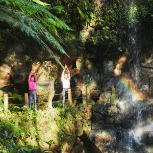 滝のそばで体験するネイチャーヨガは迫力大。