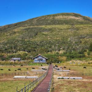 展望台から見える牧場の景色。