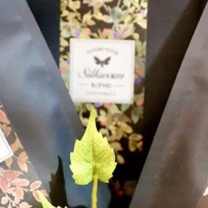 東京駅にサスティナブル&ダイバーシティフードの昆虫食が集結!『虫グルメフェスVol.0』開催レポート。