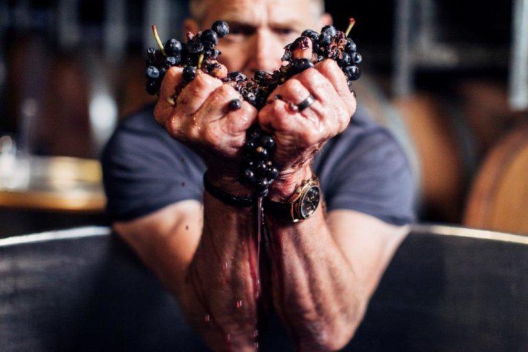 チーフ・ワイン・メーカーのマイク・ヘイズ氏さん。
