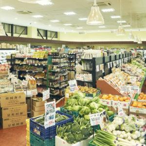 開店当時は30坪だった店も、現在では100坪を超える。