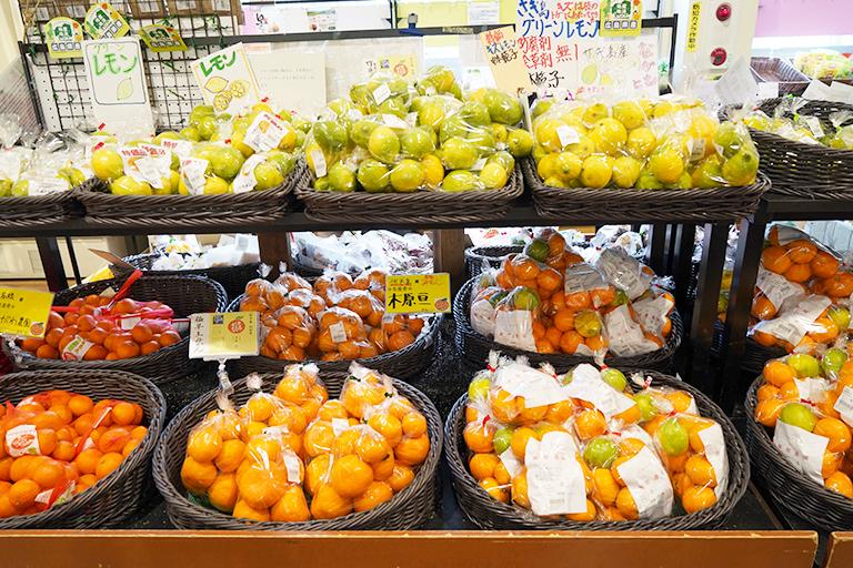 地域の農産物が買えるのも道の駅の楽しさ。柑橘類が豊富に並んでいました。