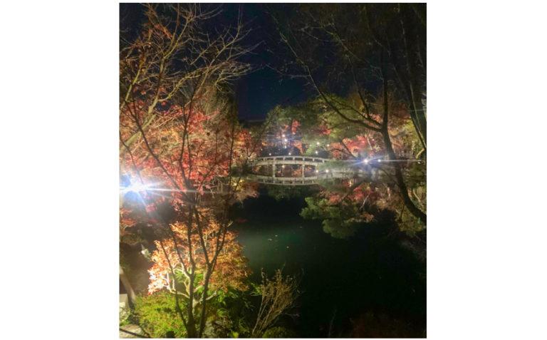 京都 禅林寺