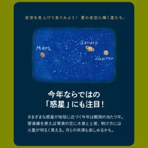 outdoor_#3-stargazing-5