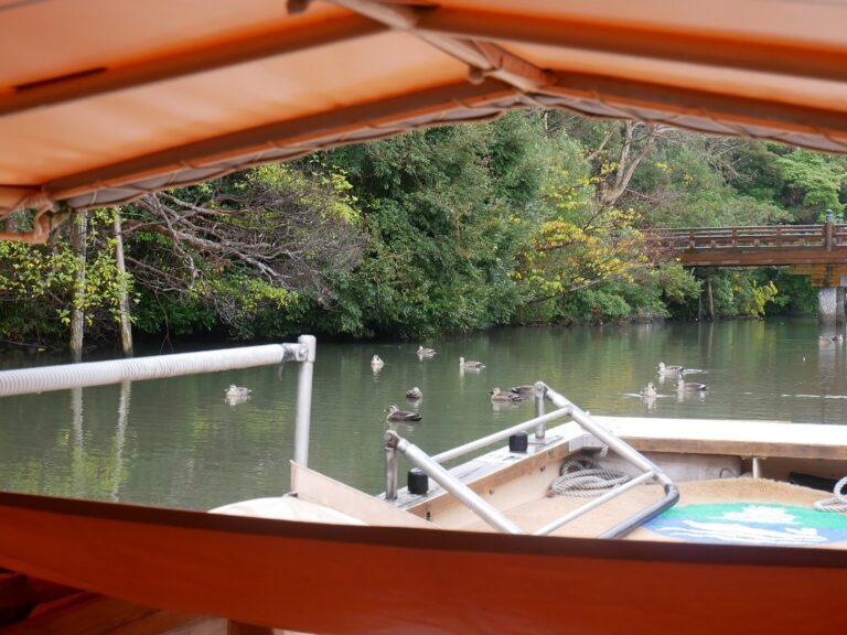島根県松江市でカニ小屋やイルミネーションを満喫旅10