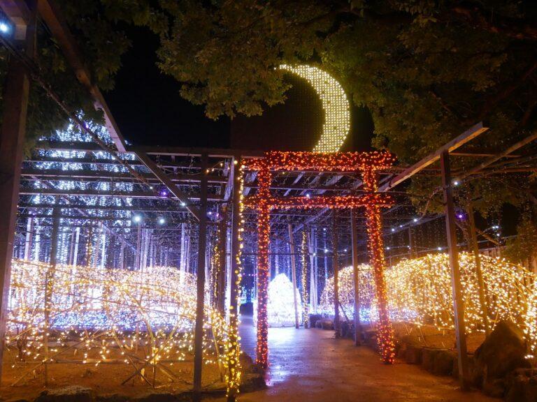 島根県松江市でカニ小屋やイルミネーションを満喫旅45