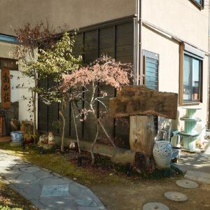 植物に彩られた、華やかな玄関がお出迎え。