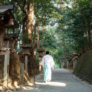 狭井神社へ向かう参道は両脇に薬木・薬草が植えられた「くすり道」となっている。
