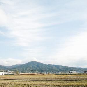 神体山の美しい形は神々しく見とれるお姿