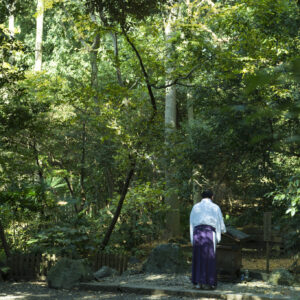 武蔵国の一の宮である氷川神社。発祥の地とされる「蛇の池」には今も湧き水があふれる。
