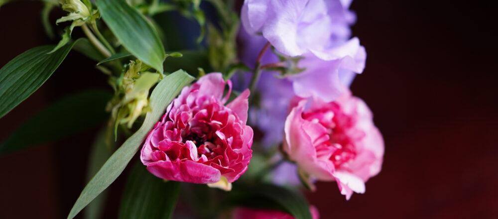 """リモートワークに花を飾って。フラワーアーティスト・前田有紀さんがおすすめする""""春の花""""。"""