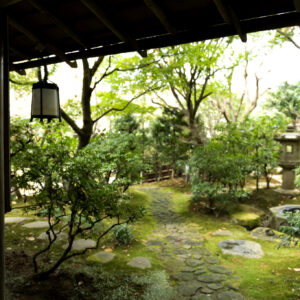 写経場から望める静謐な庭は四季折々の景色が堪能できる。