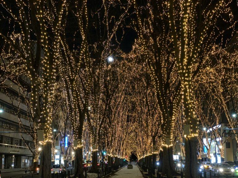 仙台冬の風物詩、光のページェント。今年は歩道が閉鎖されていたけどきれい!