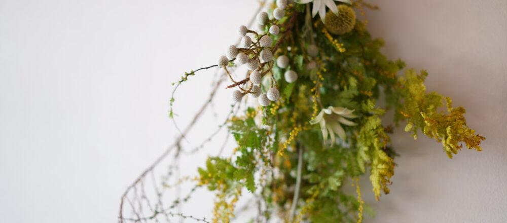 フラワーアーティスト・前田有紀さん直伝!黄色い丸い花が愛らしいミモザの楽しみ方。