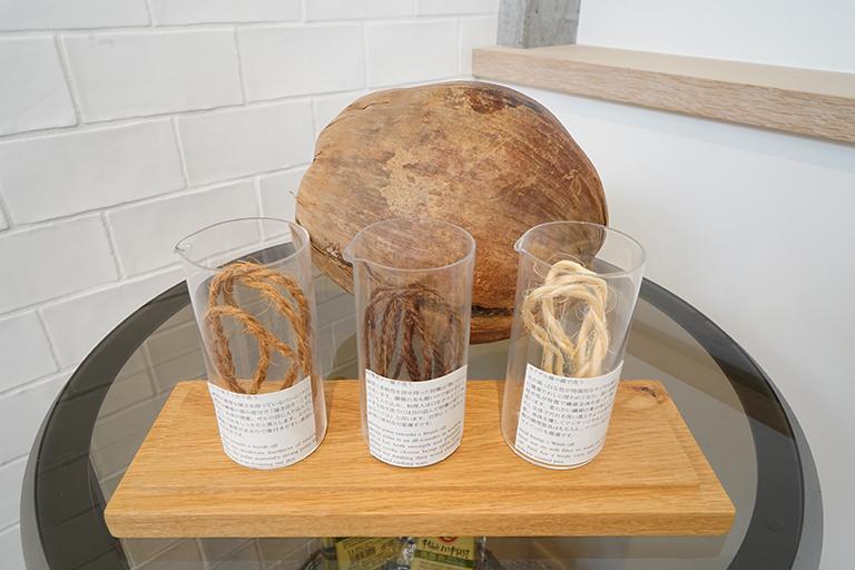 左からパーム、棕櫚(しゅろ)、サイザル麻。奥はヤシの実のサンプル。