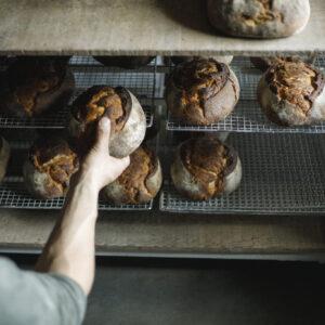 ブリオッシュ・ペイザンヌ。大きく成形して中までしっとり。手ごねでバターを生地になじませるのは重労働。バターの風味が小麦の旨味で持ち上げられている。