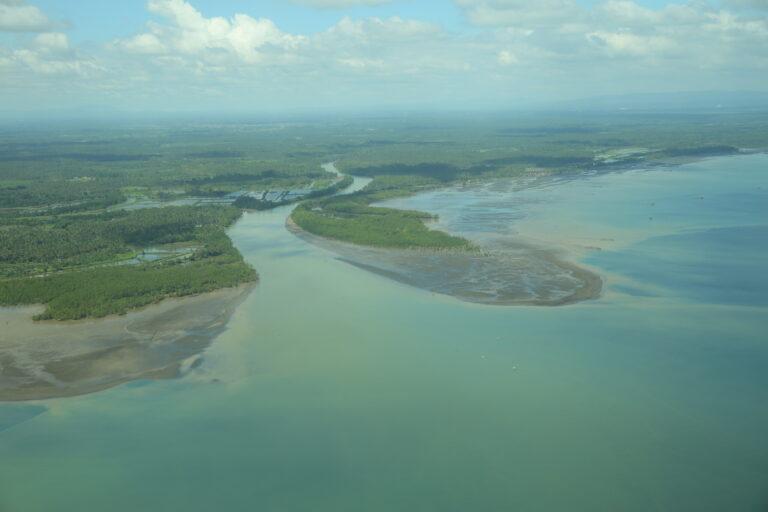 雨が降った後の河口付近。森林伐採により地面がむき出しになる。そこに雨が降ることで土壌が河川に流出し海へと運ばれる。