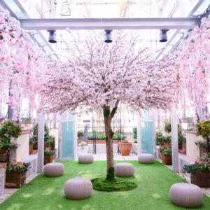 空中庭園の中央にある桜の幹は本物を持ってきたというこだわりっぷり!