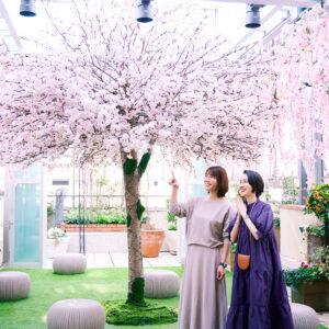 ピンクの花々が彩る空間では、どの角度から写真を撮ってもキマります。
