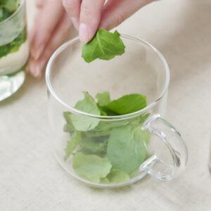 ミントを適量摘み取ってカップに入れ、お湯を注ぐだけでお茶の出来上がり。