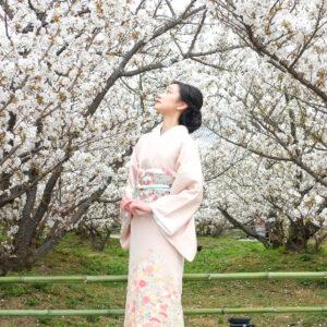 【京都】引っ越してから初めての春!桜咲き乱れる〈仁和寺〉を参拝〜前編〜