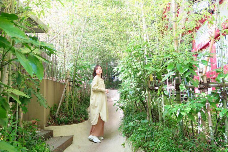 小路には約6,000種類の日本の古典植物が。中には「祝い」や「災い除け」の意味を持つものも。