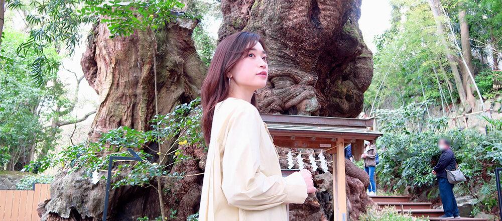 「來宮神社で大楠の生命力に触れよう」/MARIKOの、神社 de デトックス!