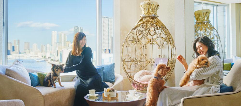〈ホテル インターコンチネンタル 東京ベイ〉にドッグフレンドリールーム&ラウンジがオープン!