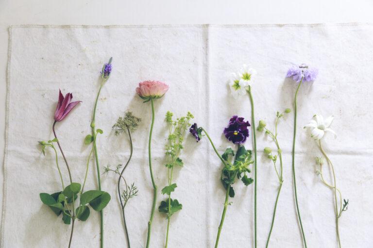 【step2】1本ずつに分けてみる。水揚げが終わったら、紙の包みを開いて1本ずつ並べ、葉っぱを取ったり、茎をそろえたりと処理をする準備を。花と向き合う心落ち着く時間になるはず。