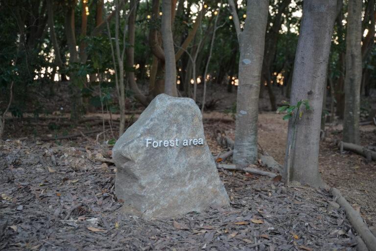 この石が目印。