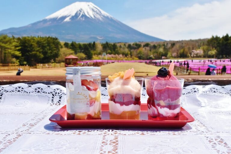 河口湖〈富士芝桜まつり〉