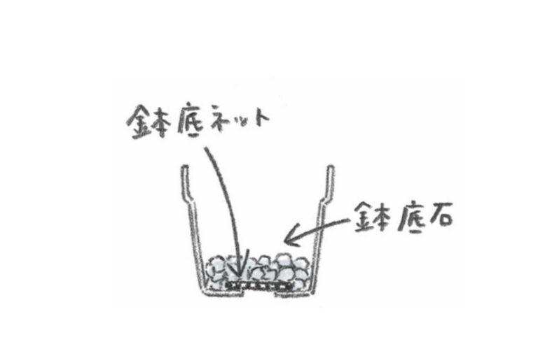 おうち菜園