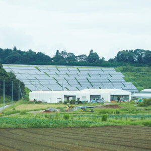 2メガワットのソーラーパネルが自然のエネルギーを生み出す。