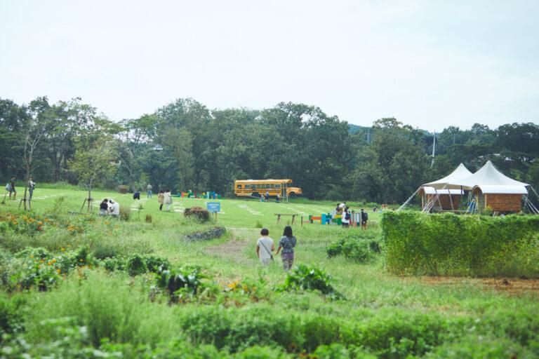 自由に過ごせる草原が広がるクリエイティブパーク。ステージでライブが開催されることもある。