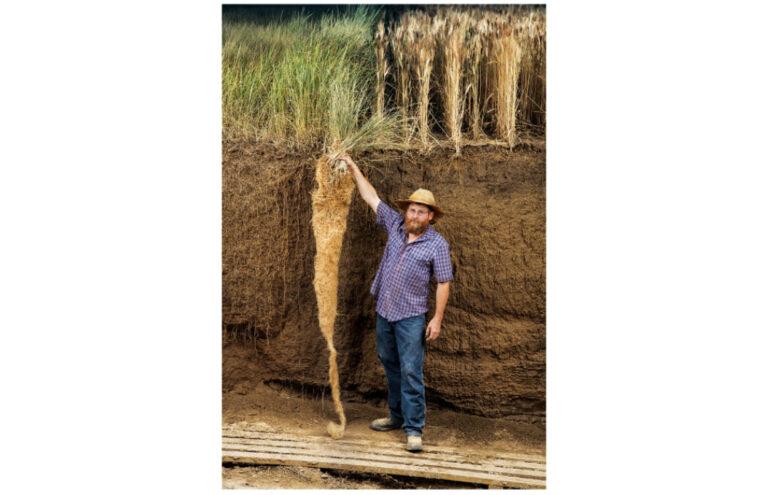 多年生のカーンザと従来の一年生の小麦の根の違いを示す農業生態学者、ジェリー・グローバー。 小麦の根にくらべるとカーンザの根は2mも長く伸び、一年生穀物よりも深くまで地中の栄養分と水を吸収することができます。 多年生植物であることから、カーンザは耕起による土壌破壊の影響を受けずに成長し、土壌中に多くの炭素を取り込みながら豊かな生態系を支えるため、環境を再生する農業にとって理想的な作物です。 JIM RICHARDSON ©︎2021Patagonia, Inc.