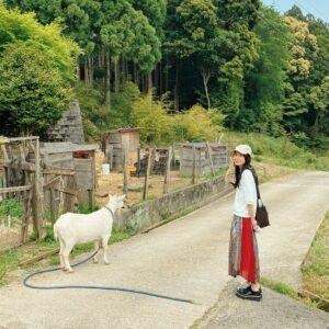 マイペースなヤギさんと交流。