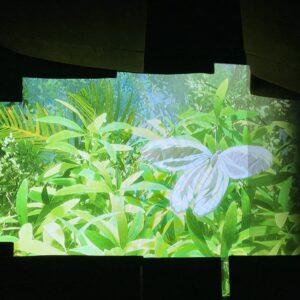 ZUKAN MUSEUM GINZA powered by 小学館の図鑑 NEO