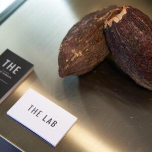 ガトーショコラに使うカカオ豆は3種類をブレンド。