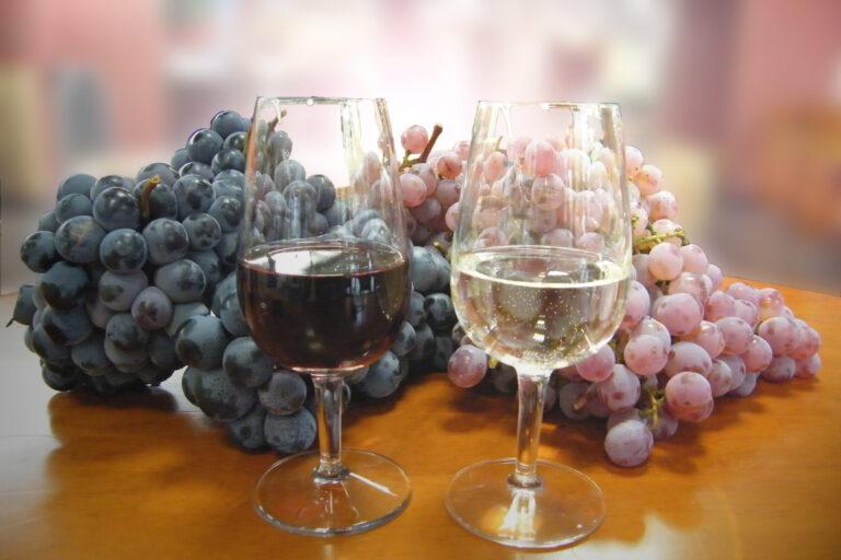 〈ワイン県やまなし〉