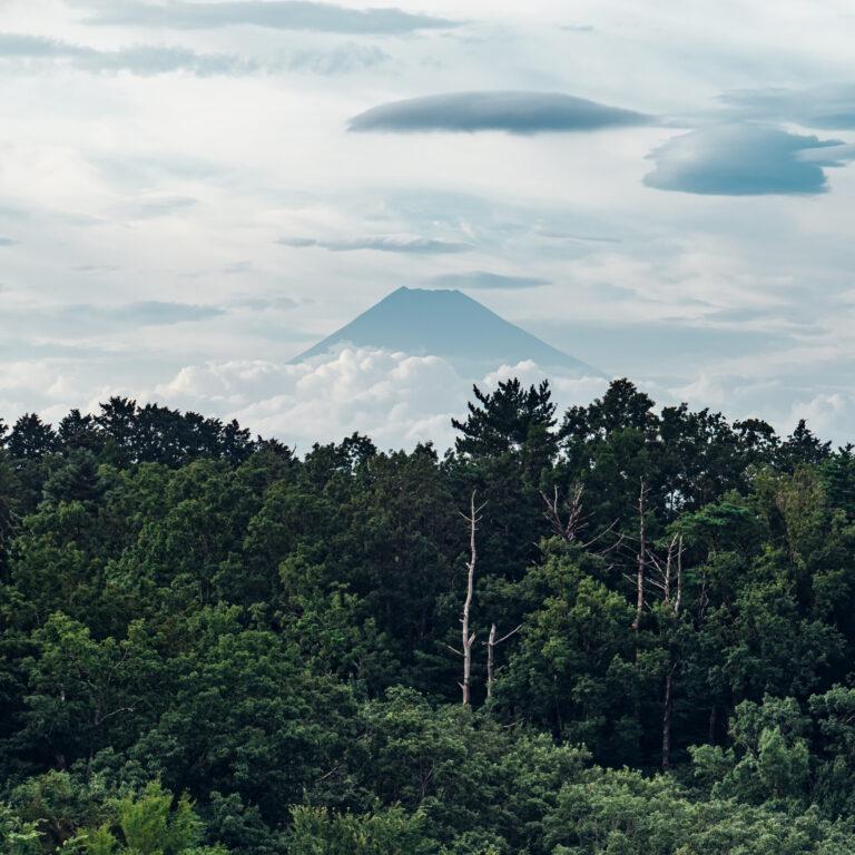 #山紫水明 #富士山の見える部屋!